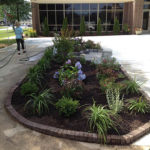 Landscaping Design-5