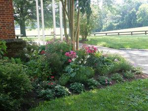 garden-design-installation-NorthEast-Maryland